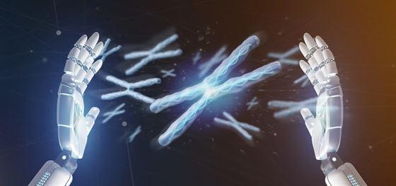 Estrutura dos cromossomos